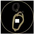 Quinta do Chocalhinho Logo